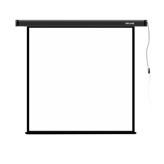 Проекционный экран Deluxe DLS-E274x210
