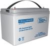 Аккумуляторная батарея Challenger G12-90