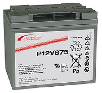 Аккумуляторная батарея SPRINTER P 12V 875