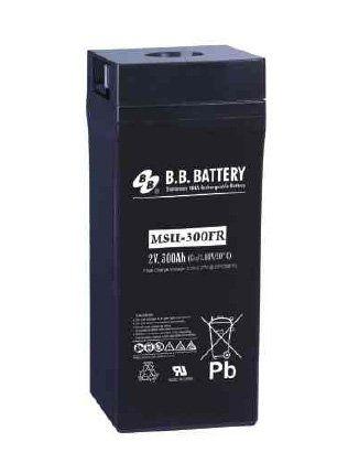 Аккумуляторная батарея B.B.Battery MSU 300-2FR