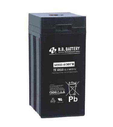 Аккумуляторная батарея B.B.Battery MSU 600-2FR